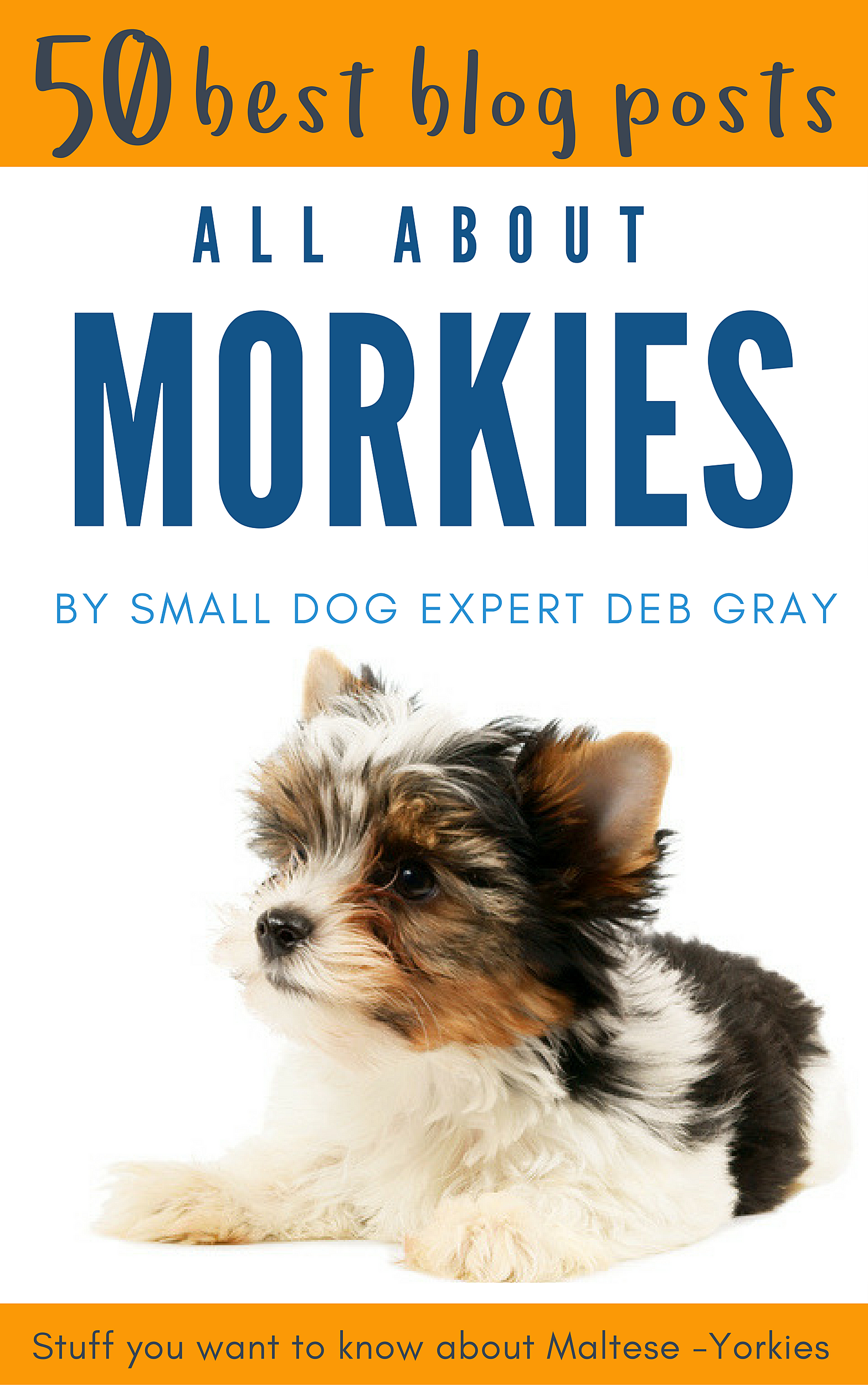 All-About-Morkies-50-Blogs-KINDLE Helpful Morkie Resources