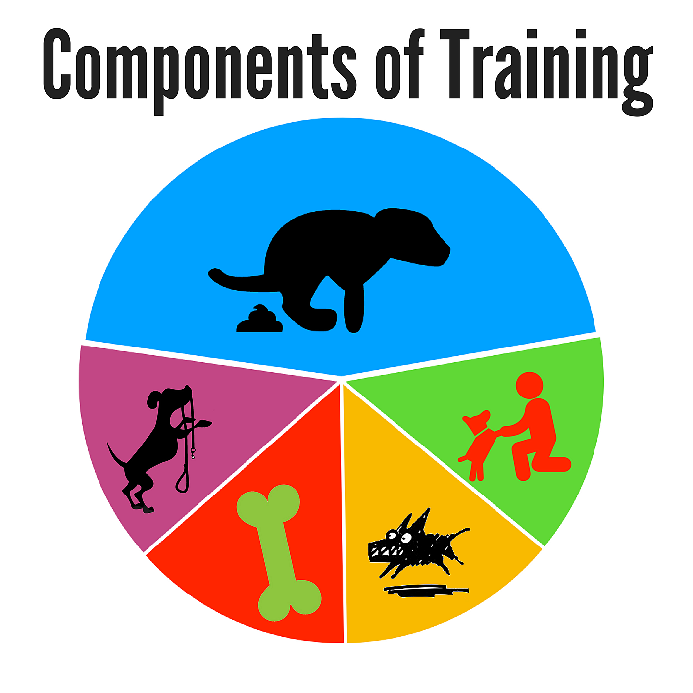 Components-of-Training-copy Train your Morkie